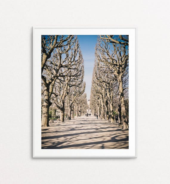 Paris Photography, Jardin des Plantes, Paris Print, Paris Decor, Home Decor, Paris in Winter, Paris Wall Art, Paris Images, Paris Pictures