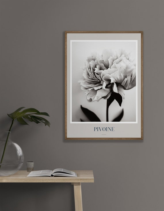 Peony Art Print Poster, Peony Print, Peony Wall Art, Peony Photography, Peony Black and White