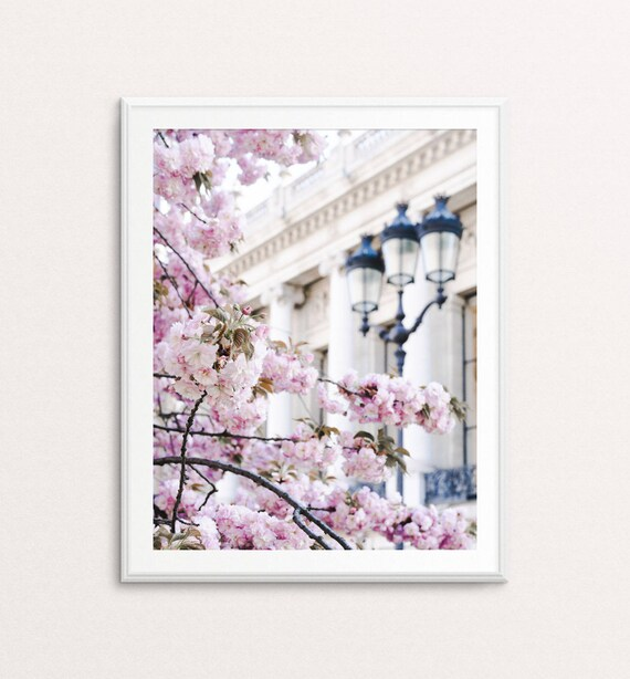 Paris Photography - Paris Cherry Blossoms, Paris Print, Paris Wall Art, Paris Print, Paris Decor, Paris Bedroom Decor, Springtime in Paris