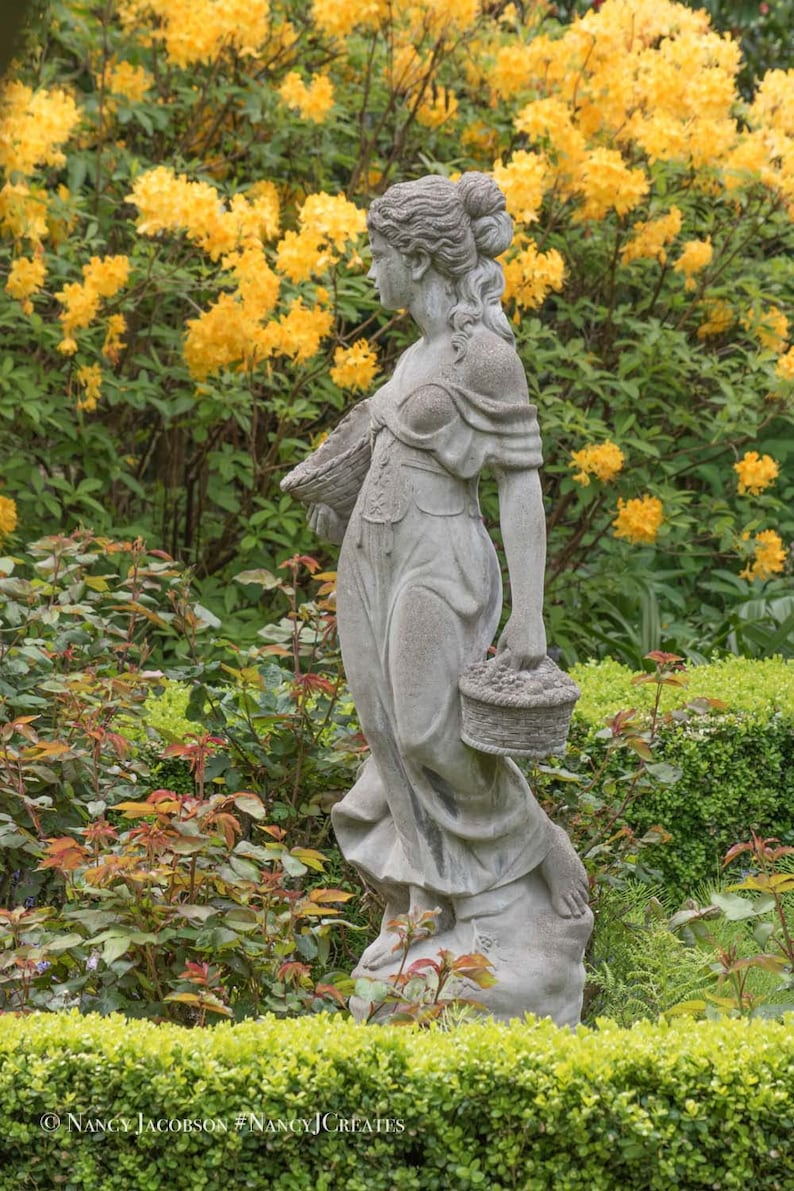 Victorian Statue In Rose Garden Picture Yellow Orange Rhododendron Blooms Flower Garden Wall Art Print Gray Stone Statue Of Woman Photo