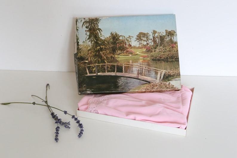 new Dress background Nuisette vintage Powder pink colour combination