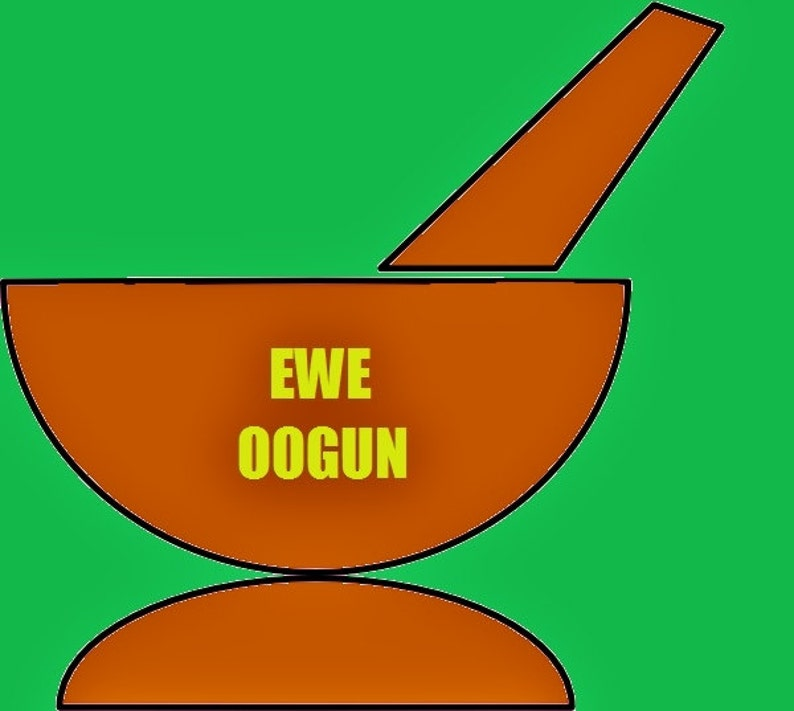 Ewe Amunimuye Yoruba Ifa Leaves Ewe Oogun Ifa Spiritual Supplies