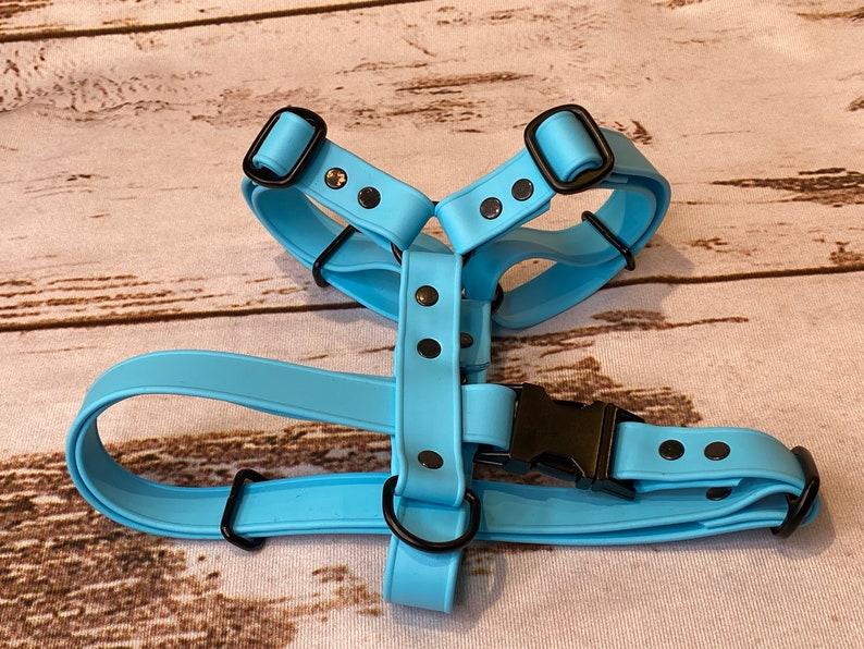 waterproof dog harness dog harness Biothane harness sky blue harness Biothane dog harness adjustable dog harness waterproof harness