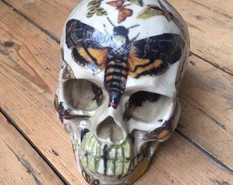 Decorative Moth Skull / Human Replica Skull / Unusual birthday gift for him or her