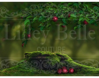 Lilley Belle Couture
