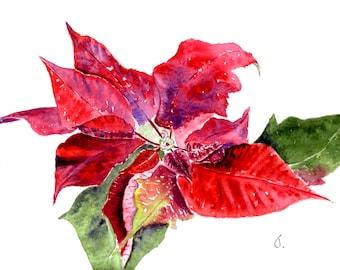 Handmade Poinsettia Watercolor Cards perfect for Thank You Cards