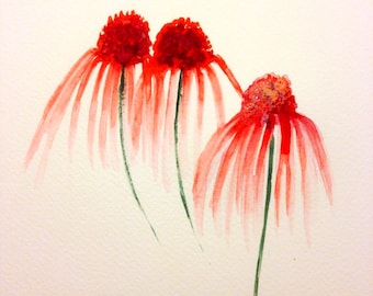 Echinacea Handmade Watercolour Flower Cards a set of four