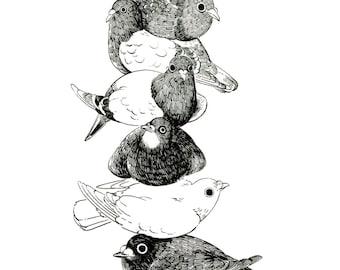 "Art Print - ""Pigeon Stack"" - 4x6 pigeon dove cute bird illustration"