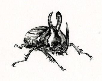 "Original Artwork - ""rabbit beetle no.2"" - rhino beetle ink drawing insect illustration bug art"