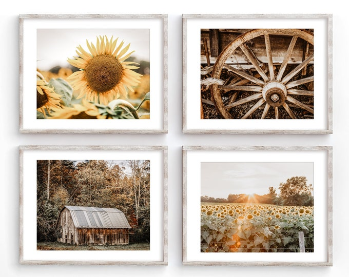 Autumn Barn Landscape Farmhouse Wall Art Decor Photography Prints. Gold & Brown Country Sunflower Canvas Wall Art for Rustic Home Decor.