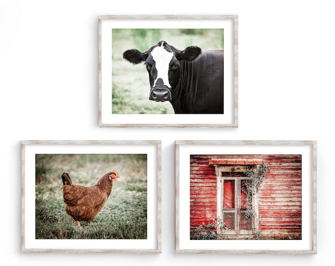 Primitive Farmhouse Wall Art Decor Set for a Country Kitchen. Rustic Red Barn & Cow Farmhouse Wall Art Print or Canvas Set. Gift for Her.