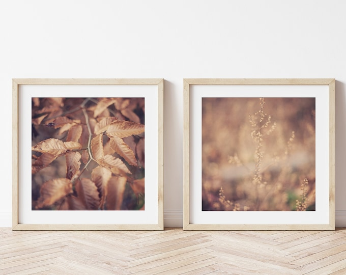 Rustic Modern Nature Fall Wall Art Decor. Rustic Copper Golden Brown Autumn Leaves Art Print or Canvas Art for Rustic Home and Cabin Decor.