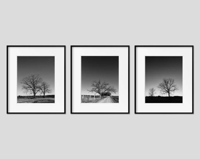 Black & White Tree Landscape Wall Art Set of 3 Prints. Rustic Nature Decor for Office, Bedroom and Living Rooms. Modern Minimal Canvas Art.