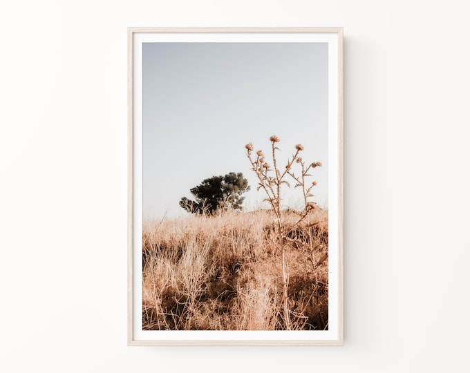 Israel Sunrise in Galilee Print or Canvas Wall Art. Minimal Landscape Nature Wall Art Decor. Holy Land Photography for Wall Art Decor.