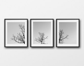 Minimal Nature Print Set, Tree Photography Prints, Rustic Decor, Black & White Wall Art, Tree Canvas Set, Farmhouse Prints, Gallery Wall Art