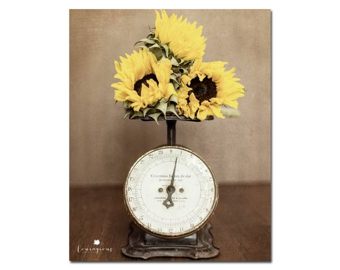 Farmhouse Kitchen Decor Rustic Sunflower Wall Art Yellow Country Photography Vintage Kitchen Farm Scale Framed Prints Canvas 24x30 20x24