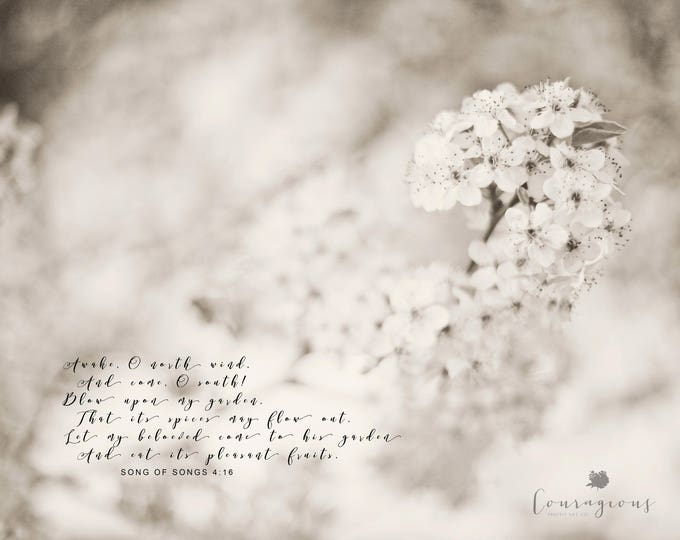Scripture Photography Print, Prophetic Art, Bible Verse Print, Song of Songs, Christian Art, Framed Scripture Print, Bible Verse Canvas