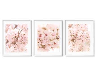 Floral Photography Print, Blush Pink, Floral Print Set of 3, Pink Nursery Prints, Nursery Wall Art, Framed Floral Prints, Floral Canvas Set