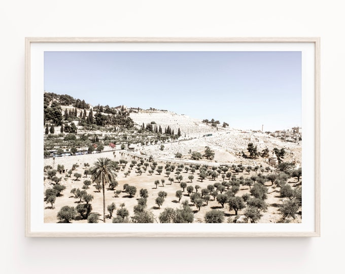 Israel Wall Art Decor of the Mount of Olives in Jerusalem. Kidron Valley Olive Trees & Palms in the Holy Land Israel Travel Print or Canvas.