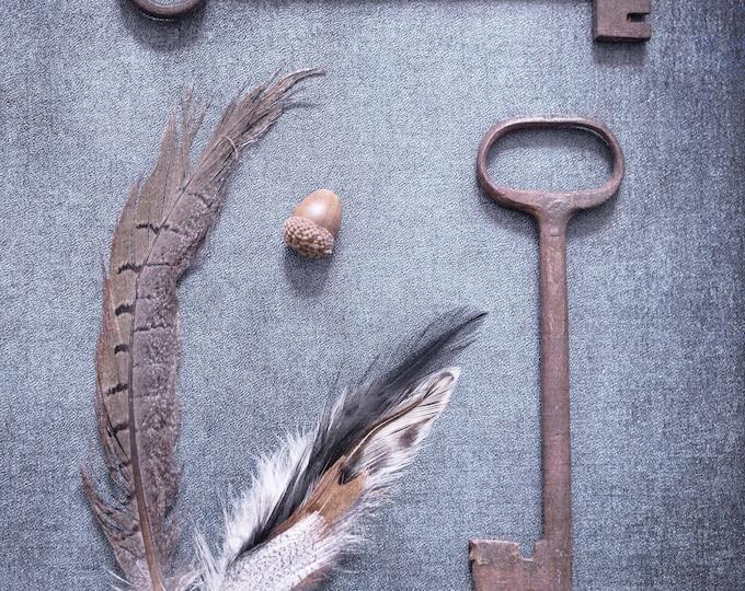 Key & Feather Photography Print, Skeleton Key Print, Blue, Rustic Home Decor, Nature Print, Framed Key Print, Feather Canvas, Antique Key