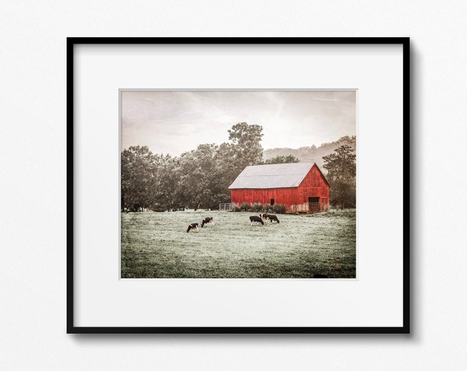 Primitive Rustic Country Farmhouse Wall Art Decor. Red Barn & Cows Landscape Photography Print or Canvas. Also available on Wood or Metal.