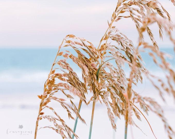 Beach Photography Print, Beach Grass, Coastal Beach Print, Blue Ocean, Framed Beach Print, Framed Nature Print, Large Ocean Canvas