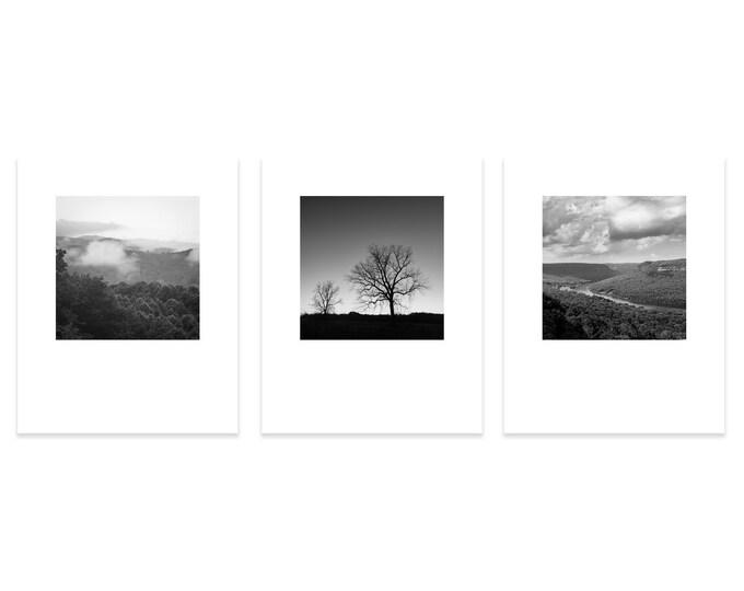 Nature Print Set, Mountain Photography Prints, Rustic Decor, Black & White Wall Art, Tree Canvas Set, Farmhouse Prints, Gallery Wall Art