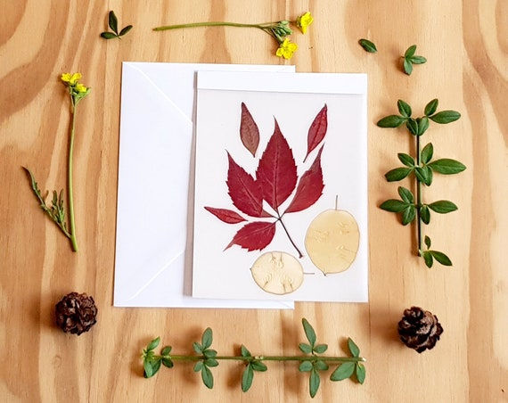 Happy fall card, grateful card, fall greeting card, thanksgiving card, fall leaves card, autumn card, fall stationary, Virginia creeper card