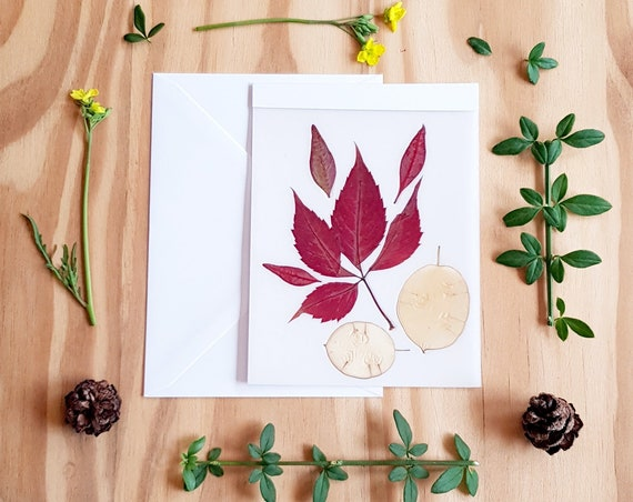 Autumn leaves, pressed leaves, pressed flower cards, blank cards, greeting cards, Autumn cards, fall cards, Autumn design, birthday card
