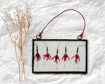 Fuchsia flower glass frame, wall hanging decor, hanging stained glass frame, home living decor, pressed flower art, Mothers day gifts UK