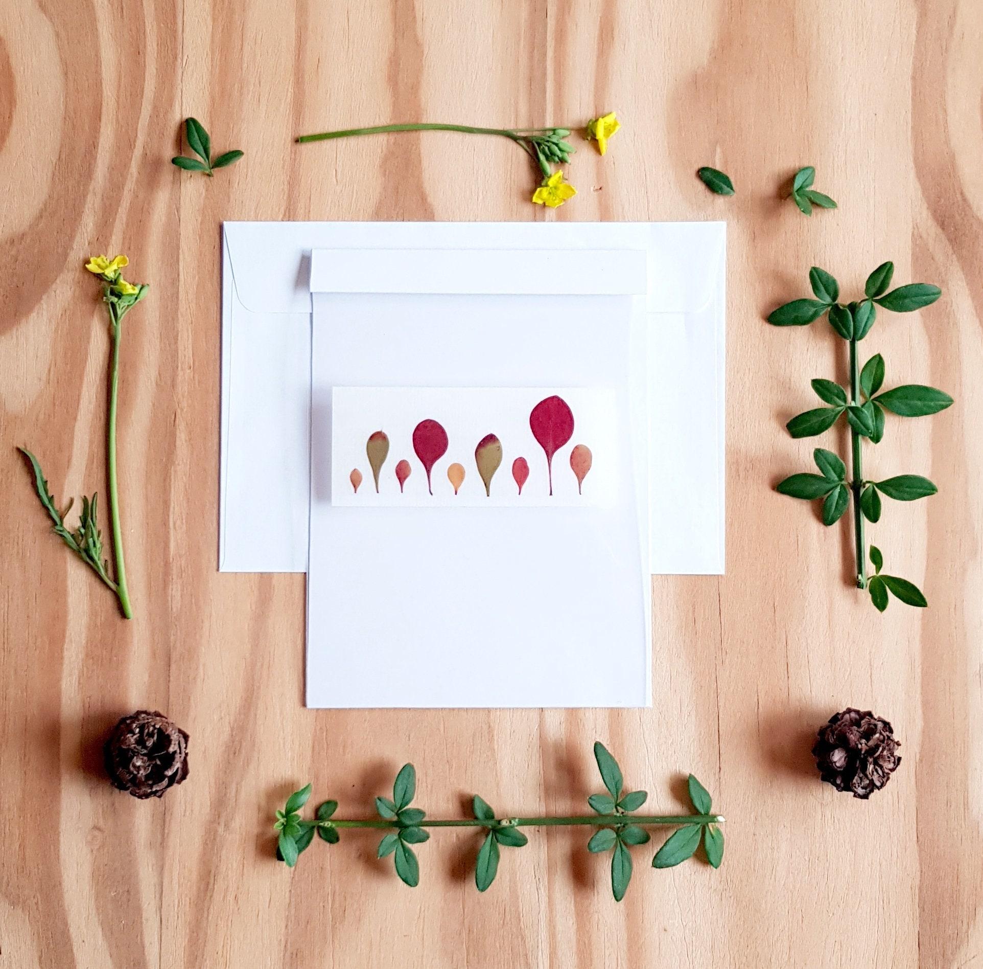 Autumn Leaves Pressed Flower Art Pressed Flower Cards Blank Cards
