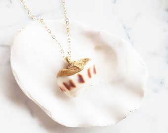 24kt Gold Dipped Hawaiian Shell Drupe Hebrew Cone Shell Miter Sun Rise Hawaii Shell Necklace