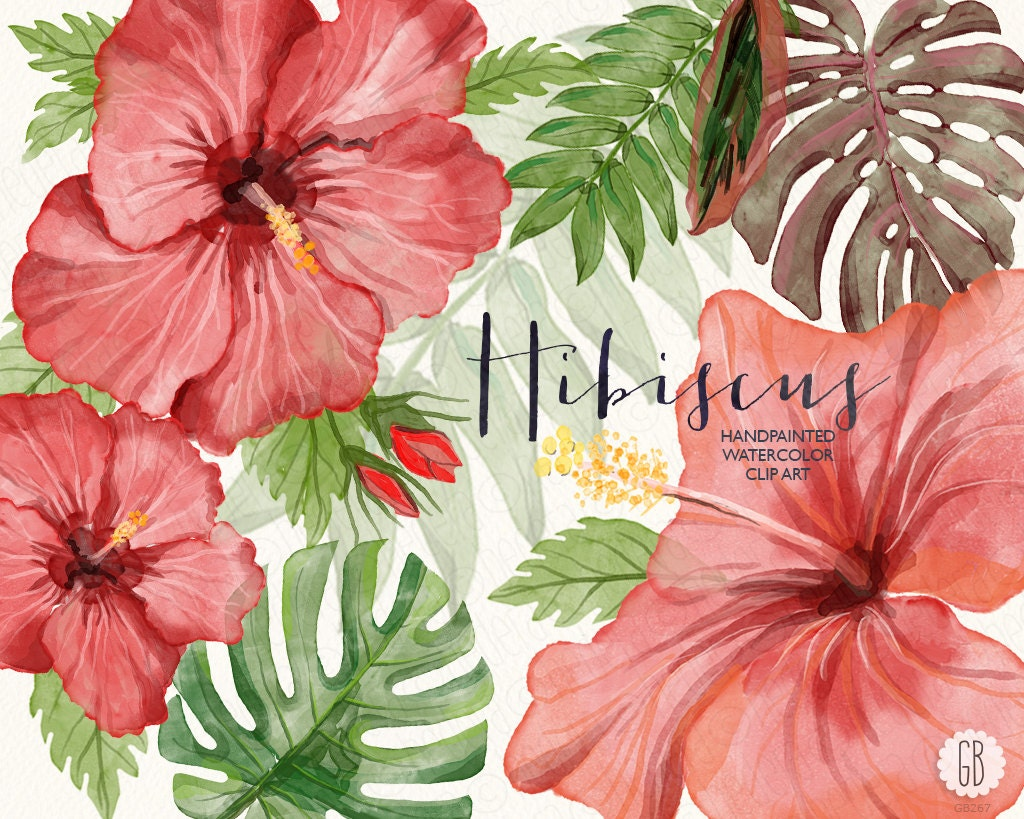 Watercolor Hibiscus Flower Tropical Leaves Jungle Plants Etsy