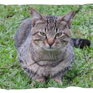 Travel ADULT MINKY BLANKET Ocelot Animal Cat Hide with Natural Hide Minky Back Business Gift