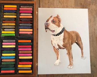 Pit Bull Art, Pit Bull Paintings, Pet Art, Pet Paintings, Pastel Drawings, Pit bull Lovers, Pit bull Artist, Pet Artists, Pet Illustrators