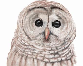 Book Illustration, Illustrator For Hire, Book Illustrator, Pastels Artist, Nature Illustrator, Book Artist, Book Cover Art