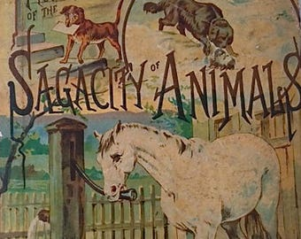 Antique Children's Book - The Sagacity Of Animals  1880's