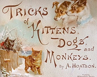 Antique Children's Book with Cats, Dogs and Monkeys
