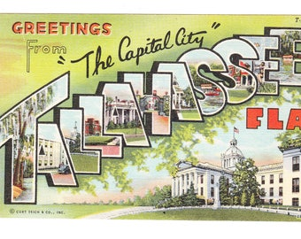 Tallahassee Florida Vintage Large Letter Postcard (unused)