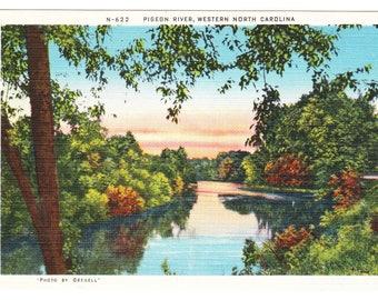 Pigeon River North Carolina Vintage Postcard (unused)