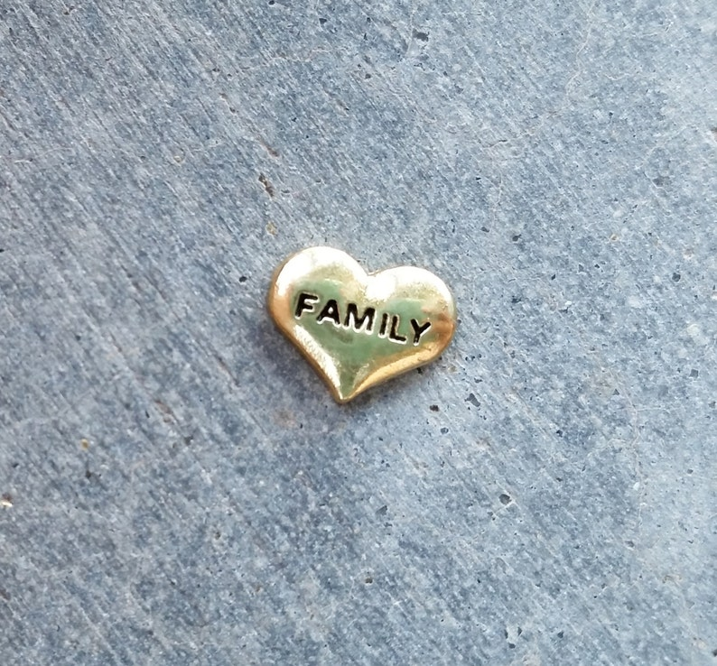 Floating Charm For Glass Memory Lockets Gold Family Heart image 0