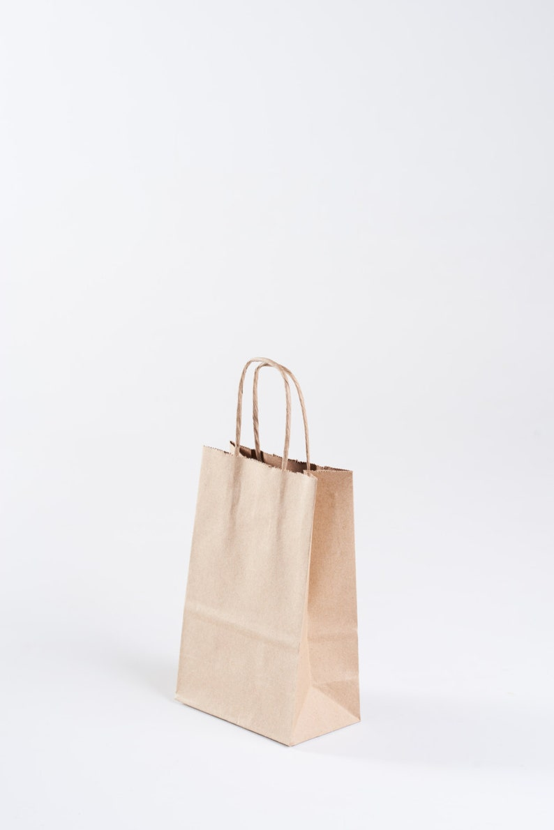 5 Kraft Paper Gift Bags With Handles Size Rose 5 1 2 Etsy
