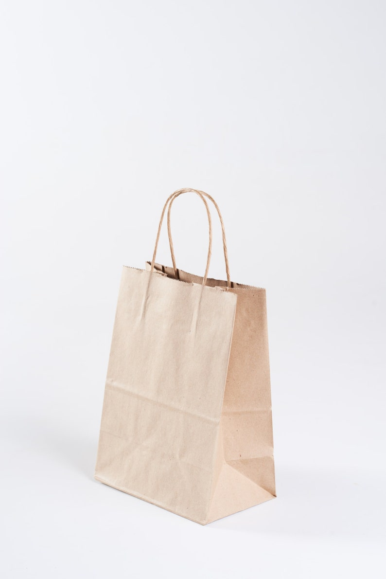 12 Kraft Paper Gift Bags With Handles Size Cub 8 X Etsy