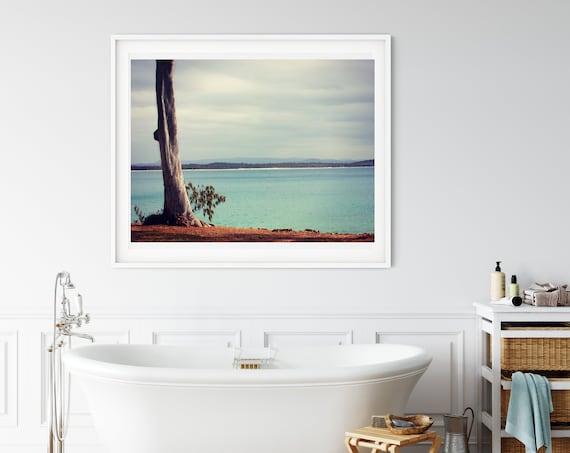 Australian Eucalyptus Photo Print, Noosa National Park, Australian Landscape, Coastal Decor