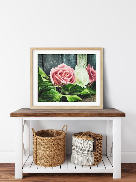 Blush Pink Rose Photo Print, Shabby Chic Roses, Floral Wall Art, Fine Art Photography