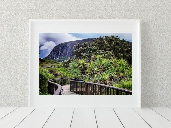 Mt Coolum Photo Print, Australian Photography, Nature Decor
