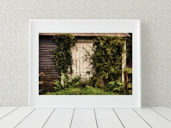 Farmhouse Photo Print, Country Home Decor, New Zealand Print