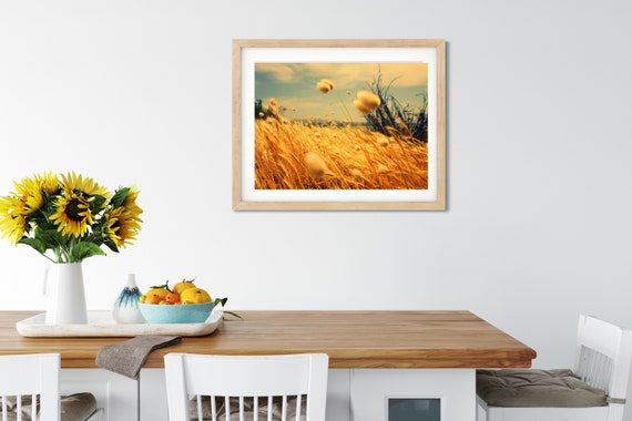 Bunny Tail Grass Photo Print, Victor Harbor, South Australia, Grass Wall Decor