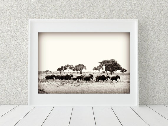 Elephant Herd Photo Print, Tanzania Art, Elephant Gifts, Wild Animal Print