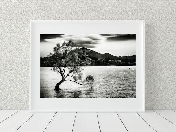 Wanaka Tree Photo Print, New Zealand Photography, Nature Decor